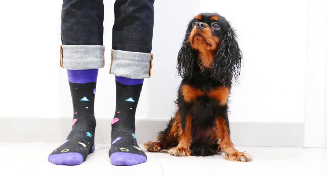 Gatsby socks with Dora for scale.